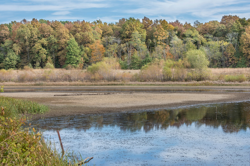 Marsh and Wetlands - Slate Run Metro Park on a crisp October afternoon in 2019.