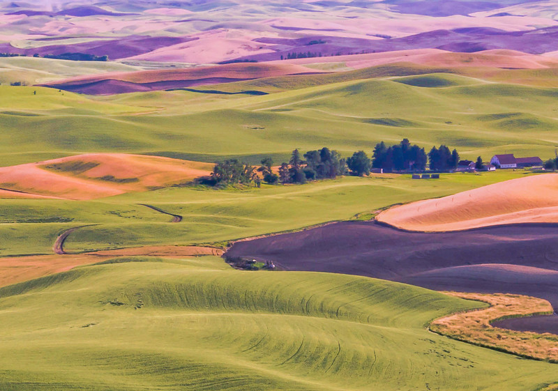 "Scenic farm scene from the picturesque are known as ""The Palouse"", Washington state."