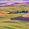 """Scenic farm scene from the picturesque are known as """"The Palouse"""", Washington state."""