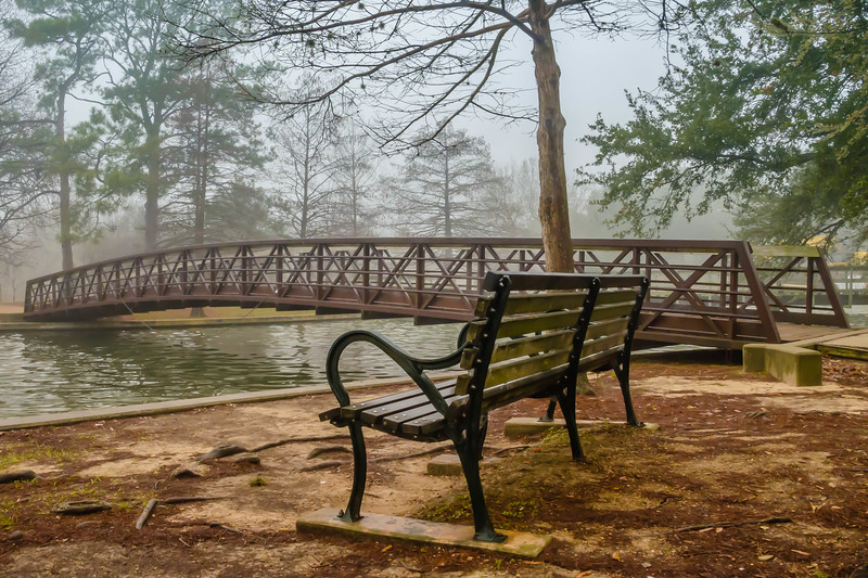 A peaceful, foggy morning at one of Houston's may beautiful parks.  This one is near Rice University