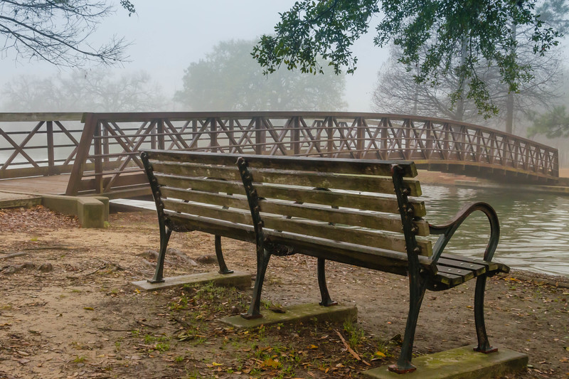 Another angle.... from a park near Rice University... in Houston, Texas