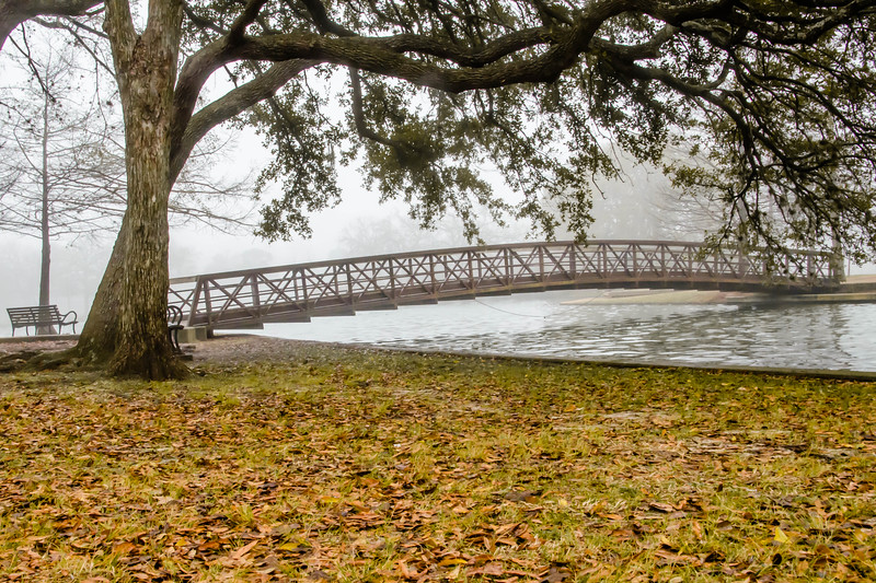 And finally... the wide shot.... from a foggy morning in Houston, Texas