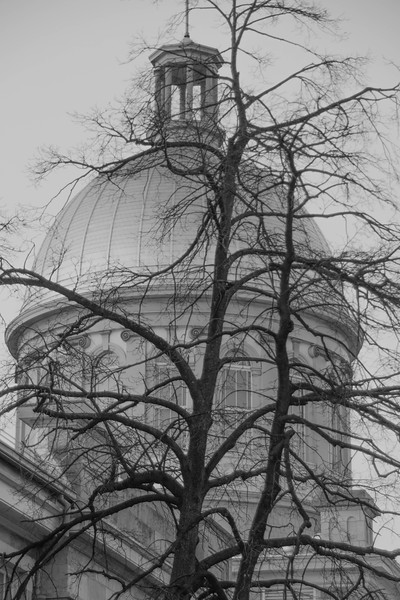 Marche Bonsecours  The Dome in Black & White