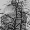 Marche Bonsecours  The Dome in Black & White