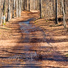 Off the beaten path.....<br /> <br /> Image 1 of 2