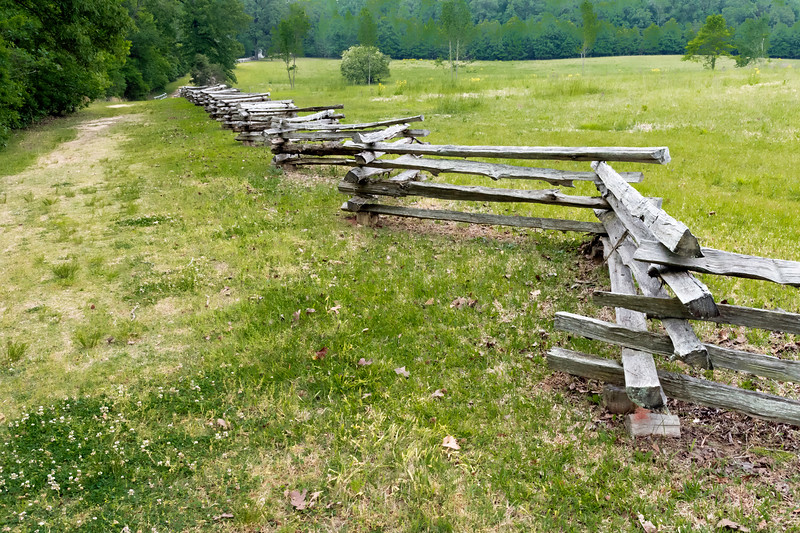 """The """"Hornets Nest"""", Shiloh National Battlefield.<br /> <br /> On the main Union defensive line, starting around 9 a.m., Prentiss's and W. H. L. Wallace's divisions established and held a position nicknamed the """"Hornet's Nest"""", in a field along a road, now popularly called the """"Sunken Road,"""" although there is little physical justification for that name. The Confederates assaulted the position for several hours rather than simply bypassing it, and suffered heavy casualties. Historians' estimates of the number of separate charges range from 8 to 14. The Union forces to the left and right of the Nest were forced back, making Prentiss's position a prominent point in the line. Coordination within the Nest was poor, and units withdrew based solely on their individual commanders' decisions. The pressure increased when W. H. L. Wallace, commander of the largest concentration of troops in the position, was mortally wounded. Union regiments became disorganized and companies disintegrated as the Confederates, led by Brig. Gen. Daniel Ruggles, assembled more than 50 cannons into """"Ruggles's Battery"""" to blast the line at close range. Confederates surrounded the Hornet's Nest, and it fell after holding out for seven hours. Prentiss surrendered himself and the remains of his division to the Confederates. A large portion of the Union survivors, an estimated 2,200 to 2,400 men, were captured, but their sacrifice bought time for Grant to establish a final defense line near Pittsburg Landing."""