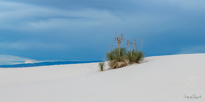 """""""Sy Drama Over White Sands This image is sized at 1x2"""