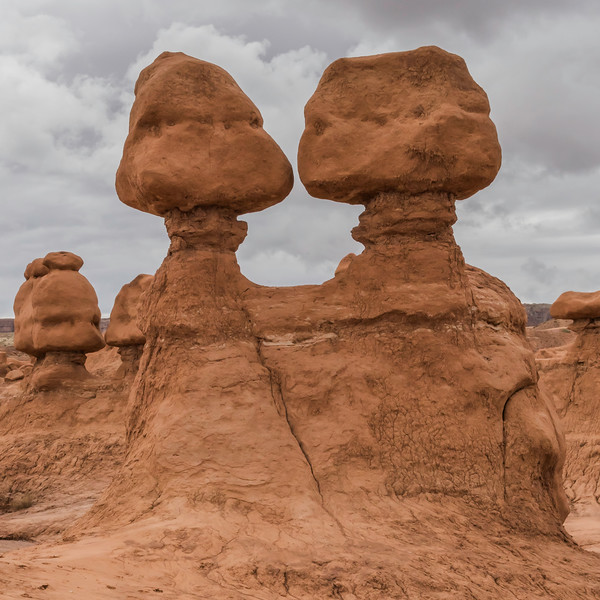 "Goblin Valley State Park is home to thousands of hoodoos and hoodoo rocks, referred to locally as ""goblins"", which are formations of mushroom-shaped rock pinnacles, some as high as several meters. The distinct shape of these rocks comes from an erosion-resistant layer of rock atop softer sandstone.<br /> <br /> The park lies within the San Rafael Desert southeast of the east limb of the San Rafael Swell and north of the Henry Mountains. Utah State Route 24 passes about four miles east of the park. Hanksville lies 12 miles to the south."