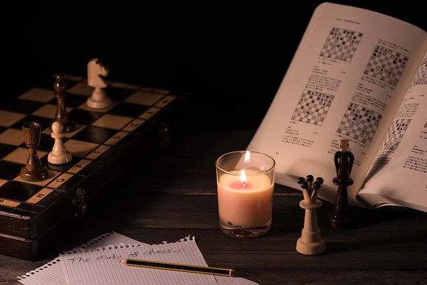 The study of chess