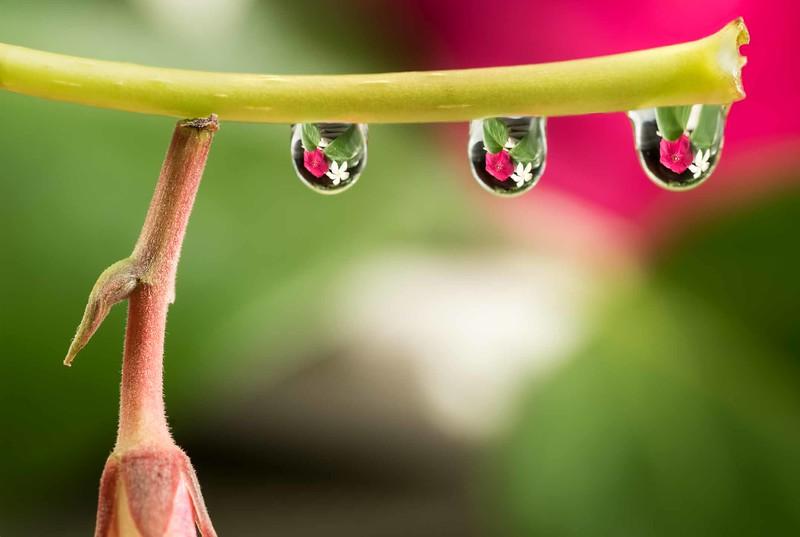 Water drops drying rack