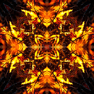 ~ Amazing Mandalas