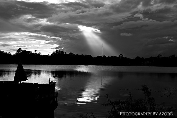 Heavens Search Light.....Winter Springs Florida.