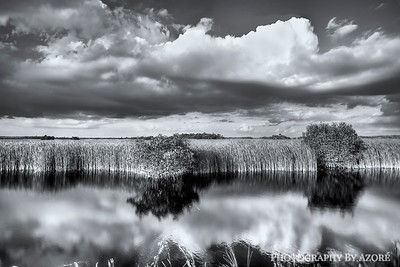 ~Black & White Photography~ Clouds In The Mirror