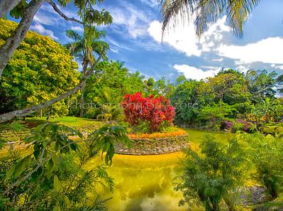 Gardens At The Ashram...