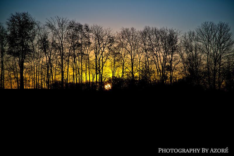 Sunrise In silhouette