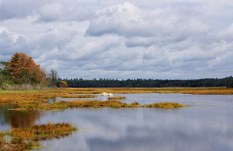 All quiet on the marsh