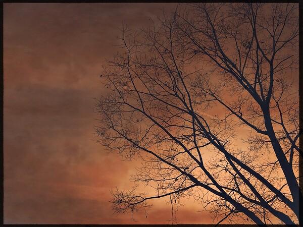 Marmalade sky