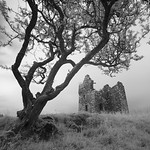 Plunton Castle, Study 3, Galloway, Scotland. 2016
