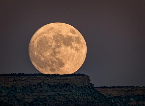 The Super Moon Has Risen 11/13/16