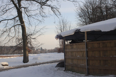 020210 Snow/sne Galopbanen/The Racecourse