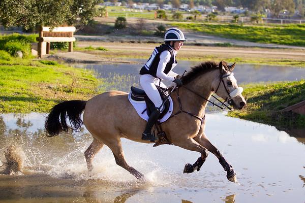 Preliminary Rider