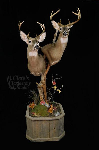 Two deer pedestal