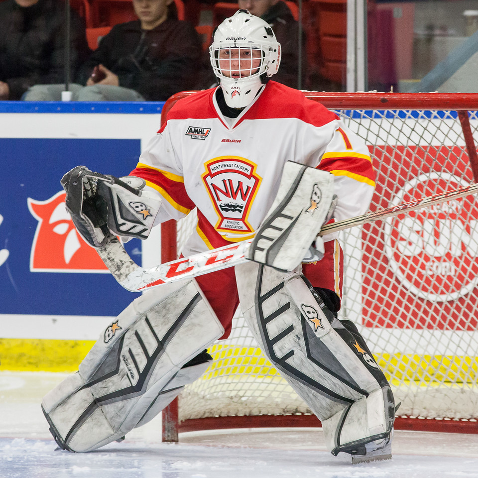 """2016-2017 Mac's Tournament Opening and Pre-game ceremonies for Game #10 (male) NW Midget AAA (Calgary) Flames vs. Hungarian National U18 hockey team. December 26, 2016.  <a href=""""http://www.laine.ca"""">http://www.laine.ca</a>"""