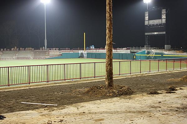 Gamecock Baseball