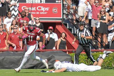 October 18, 2014 South Carolina Gamecocks 41, Furman Paladins 10 at Williams-Brice Stadium in Columbia, SC