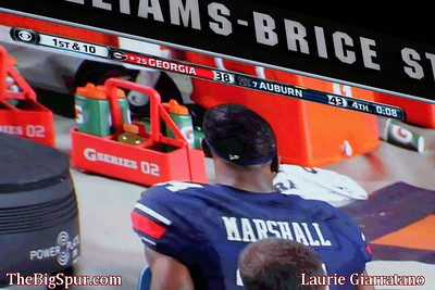 November 16, 2013 South Carolina Gamecocks 19, Florida Gators 14 at Williams-Brice Stadium in Columbia, S.C.