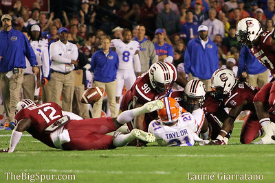 November 16, 2013 South Carolina Gamecocks 19, Florida Gators 14 at Williams-Brice Stadium in Columbia, S.C.