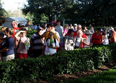 A crowd gathers to watch the players holding the snake