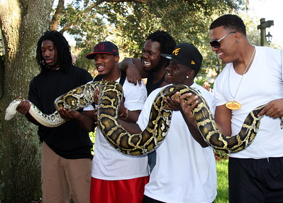 D.L. Moore, Gerrod Sinclair, Pierre Andrews, C.C. WHitlock and Wesley Saunders hold a Burmese Python