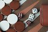 Backgammon_20080406_017