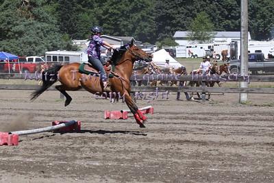 SVH -Stanwood fair 2012