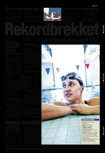 brekke-pdf