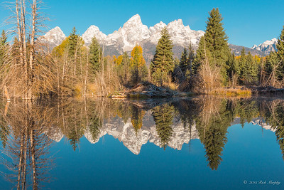 Reflections. Teton National Park