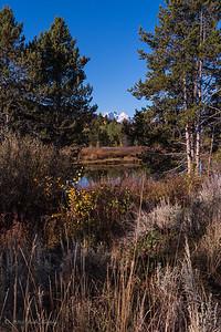 The last of fall. Teton National Park