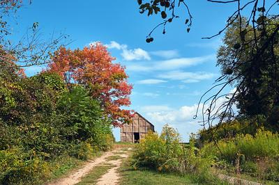 Bark Longhouse at Ganondagan State Historic Site, Victor, NY. Photo by Brandon Vick, https://www.brandonvickphotography.com/