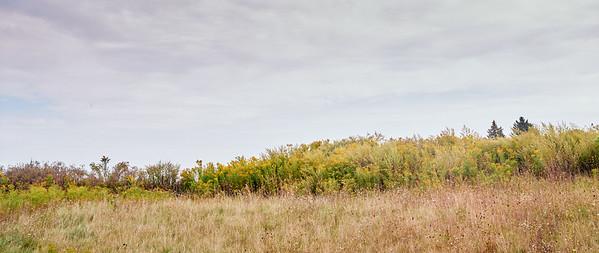 Ganondagan State Historic Site, Victor, NY. Photo by Brandon Vick, https://www.brandonvickphotography.com/