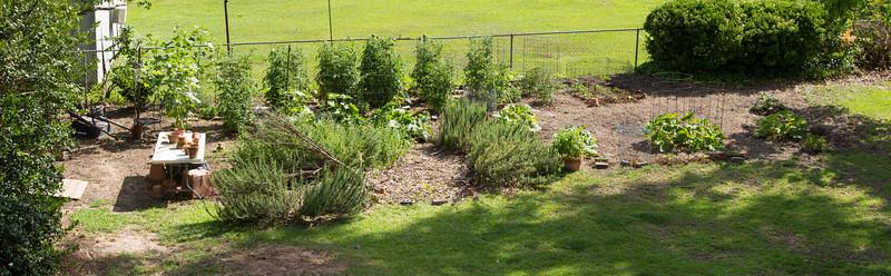 Garden 2015, Columbia, South Carolina