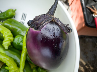 Look at that pretty eggplant!