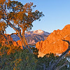 Garden of the Gods and Pikes Peak, Colorado Springs, CO
