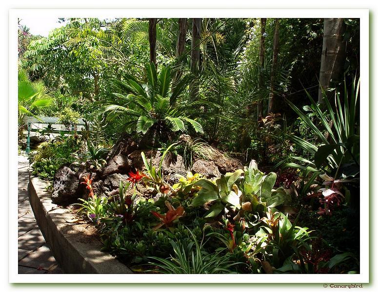 Entrance garden of Sitio Litre