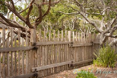 Fencing_010L