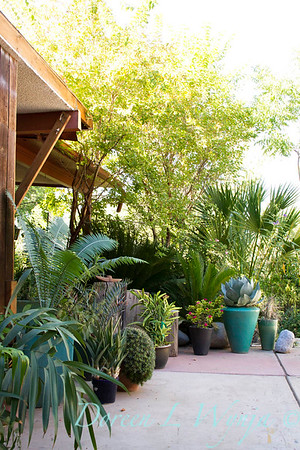 Alan Richards Home & Garden_050
