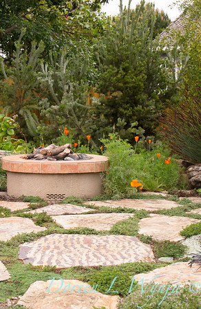 Flagstone with thyme inbetween - fire pit_9274AMG
