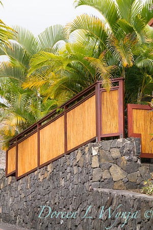 Bamboo fencing - lava rock wall_1899