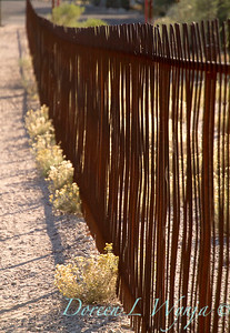 Ocotillo metal fence_5700
