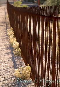 Ocotillo metal fence_5700L